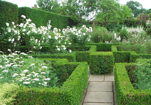 элегантный сад
