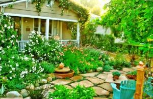 элегантный сад1