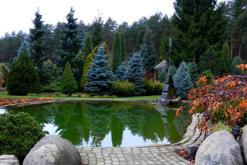 элегантный сад2