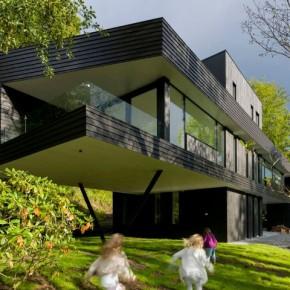 темный современный дом